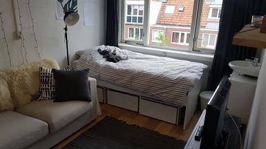 Kamer in Groningen, Wagnersingel op Kamernet.nl: Kamer te huur @ meidenhuis