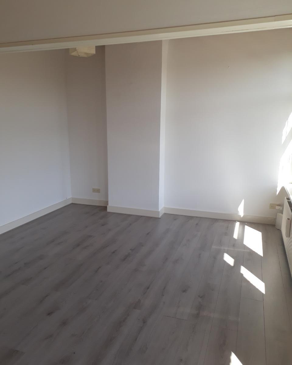 Kamer te huur in de Schlegelstraat in Den Haag