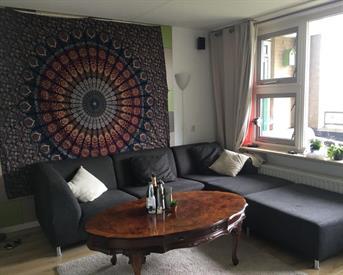 Kamer in Rotterdam, Schapendreef op Kamernet.nl: Cosy room in Kralingen for the summer