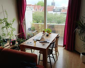 Kamer in Delft, Oostplantsoen op Kamernet.nl: Achter de geraniums in centrum Delft