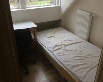 Kamer in Utrecht, Cremerstraat op Kamernet.nl: Huize Cremer Zoekt Huisgenoot