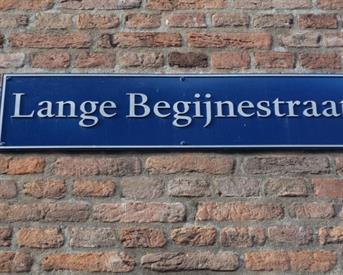 Kamer in Haarlem, Lange Begijnestraat op Kamernet.nl: Appartement in hartje centrum