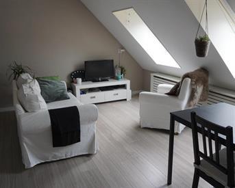 Kamer in Breda, Zijlstraat op Kamernet.nl: Centraal gelegen appartement beschikbaar in Breda