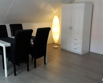 Kamer in Utrecht, Derde Oosterparklaan op Kamernet.nl: Spacious NEW loft/attick!