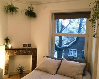 Kamer in Amsterdam, Argonautenstraat op Kamernet.nl: Beautiful cosy room in Oud-Zuid