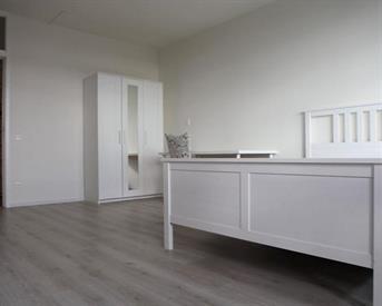 Kamer in Delft, Menno ter Braaklaan op Kamernet.nl: Room for rental