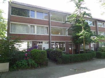 Kamer in Eindhoven, Sebastiaan van Noyestraat op Kamernet.nl: Volledig gerenoveerd huis met 7 kamers