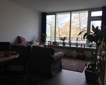 Kamer in Diemen, Beukenhorst op Kamernet.nl: Girls only: Temp. 14m2 room in East of Amsterdam