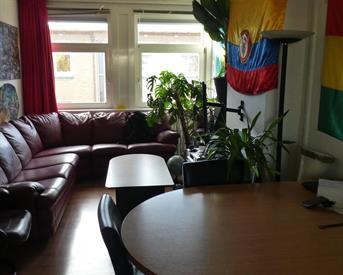 Kamer in Den Haag, Pasteurstraat op Kamernet.nl: Tijdelijk luxe appartement