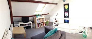 Kamer in Tilburg, Trouwlaan op Kamernet.nl: Deze woonruimte heeft een woon-slaap kamer.