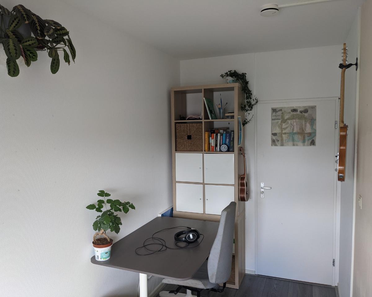 Kamer te huur in de Foulkeslaan in Delft