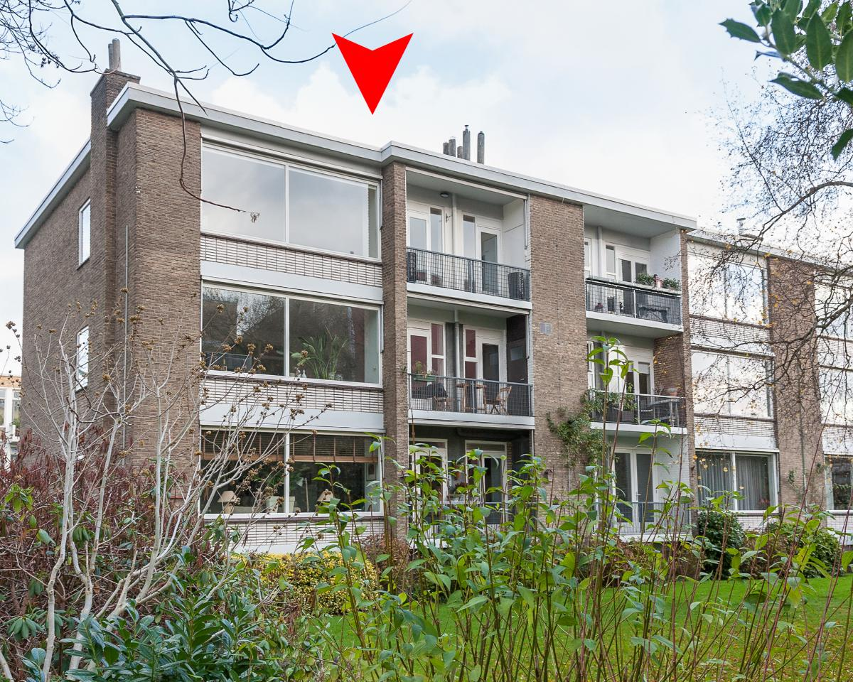 Appartement aan Willaertpad in Rotterdam