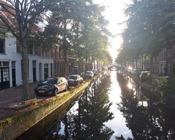 Kamer in Delft, Molslaan op Kamernet.nl: Molslaan