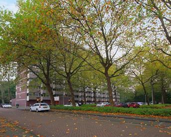 Kamer in Amsterdam, Jisperveldstraat op Kamernet.nl: Appartement in Amsterdam Noord