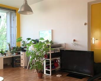 Kamer aan Klaartje Donzestraat in Eindhoven