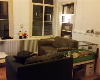Kamer in Arnhem, Spijkerstraat op Kamernet.nl: Ruim appartement in centrum Arnhem