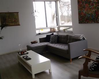 Kamer in Eindhoven, 't Hofke op Kamernet.nl: Gedeelde 3 kamer appartement voor werkenden