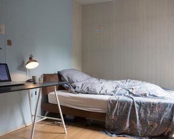 Kamer in Haarlem, Breestraat op Kamernet.nl: Knusse kamer in hartje binnenstad Haarlem