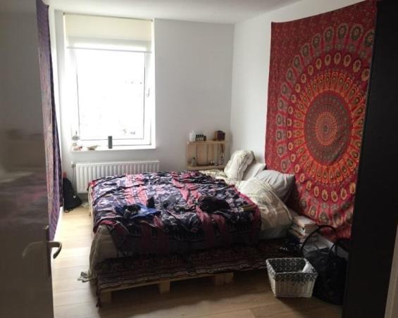 Room at Hermelijnvlinder in Diemen
