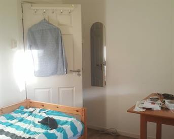 Kamer in Groningen, Hamburgerstraat op Kamernet.nl: Fijne kamer in rustig huis