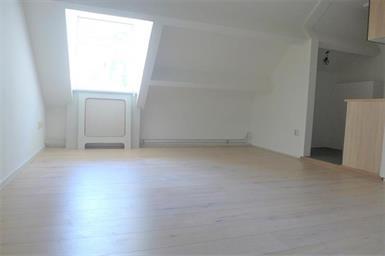 Kamer in Maastricht, Sint Annalaan op Kamernet.nl: Gerenoveerd appartement met twee slaapkamers