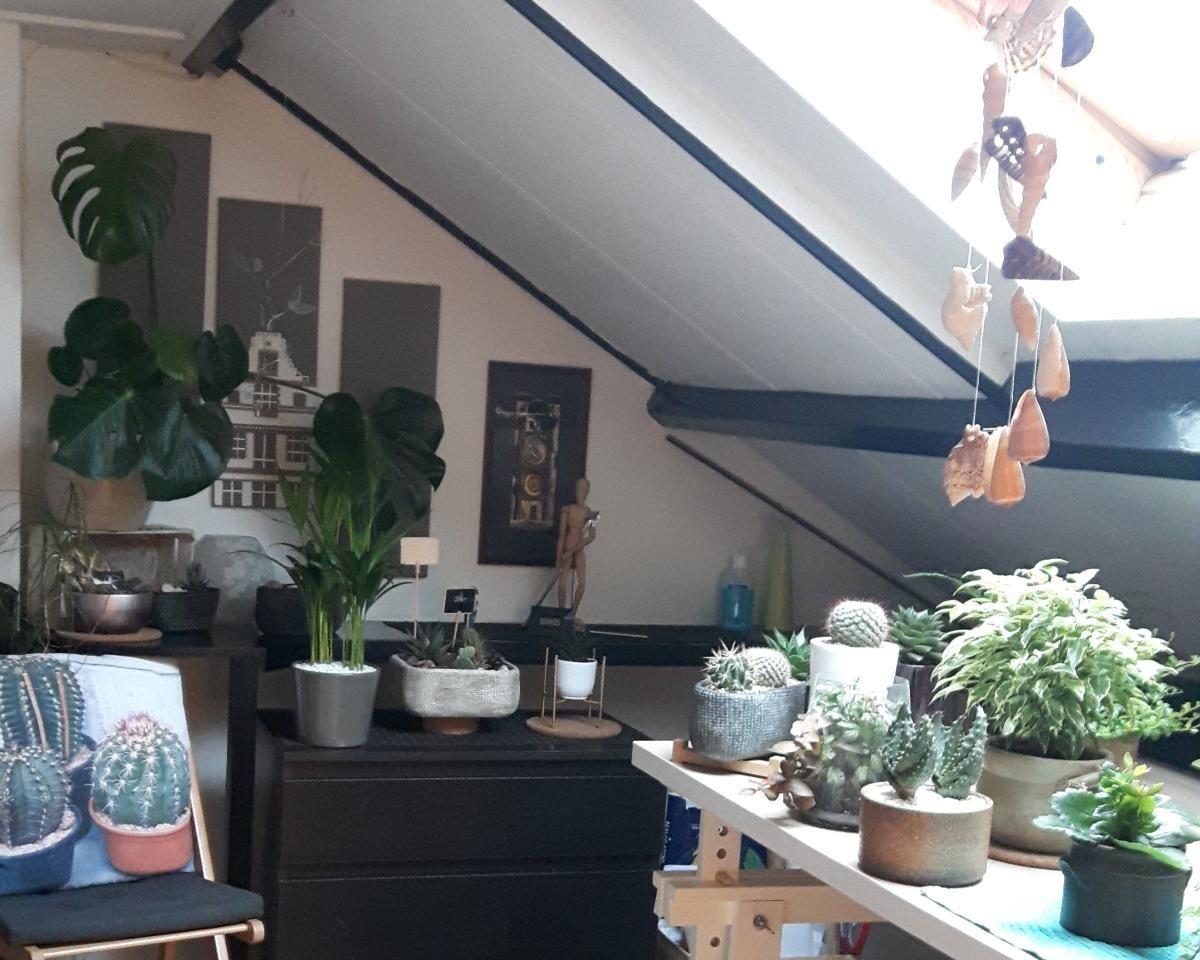 Kamer te huur in de Meermanstraat in Delft