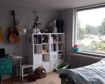 Kamer in Nijmegen, Wolfskuilseweg op Kamernet.nl: Mooie lichte kamer in gezellig studentenhuis