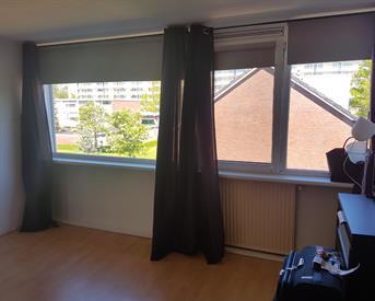 Kamer in Groningen, Robijnstraat op Kamernet.nl: Lichte kamer in een rustige en bereikbare buurt