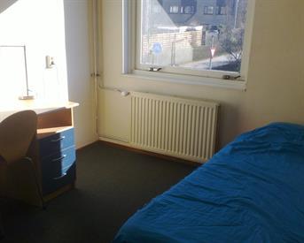 Kamer in Almere, Schonbergweg op Kamernet.nl: Voor vrolijke huurster vanaf ca. 40.