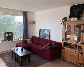 Kamer in Leeuwarden, Honingboomstraat op Kamernet.nl: Kamer in een appartement