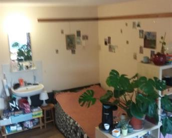 Kamer in Utrecht, Cambridgelaan op Kamernet.nl: Ruime kamer studentenflat uithof