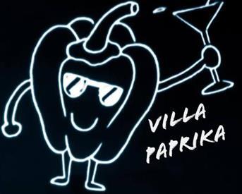 Kamer in Enschede, Mina Krusemanstraat op Kamernet.nl: Villa Paprika zoekt huisgenoot!