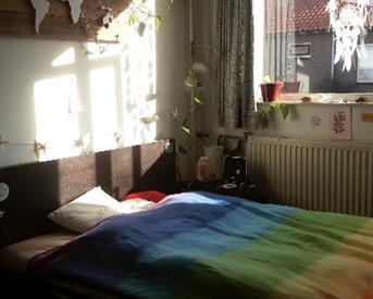 Kamer in Zwolle, Wilgenstraat op Kamernet.nl: Kamer in Huisje