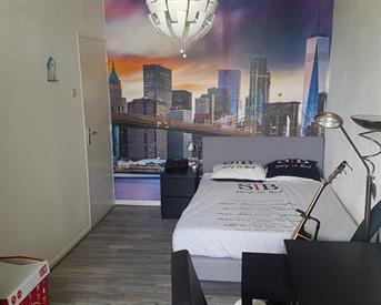 Kamer in Delft, Menno ter Braaklaan op Kamernet.nl: Tijdelijke kamer in gezellig ruim huis